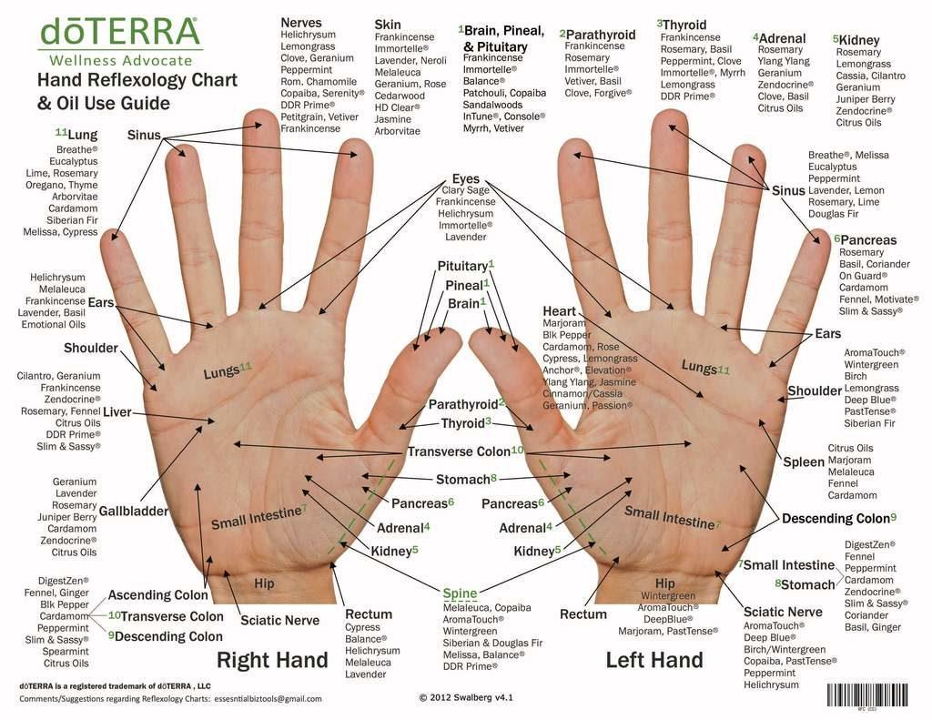 Alex Rey Holistic Terapies Reflexology Hand mapping